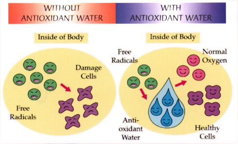 Why Ionized Water Faq3
