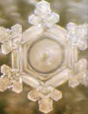 Images of Water Crystals